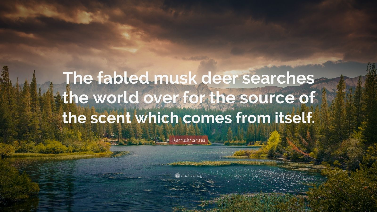"Ramakrishna Quote: ""The fabled musk deer searches the world over for the source of the scent which comes from itself."""