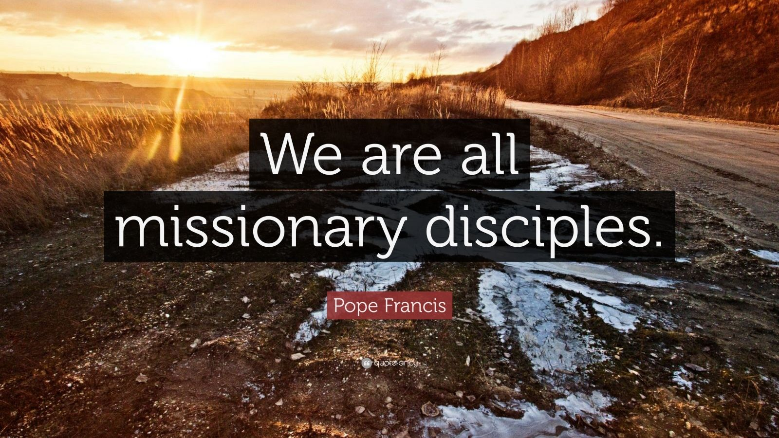 "Pope Francis Quote: ""We are all missionary disciples."""