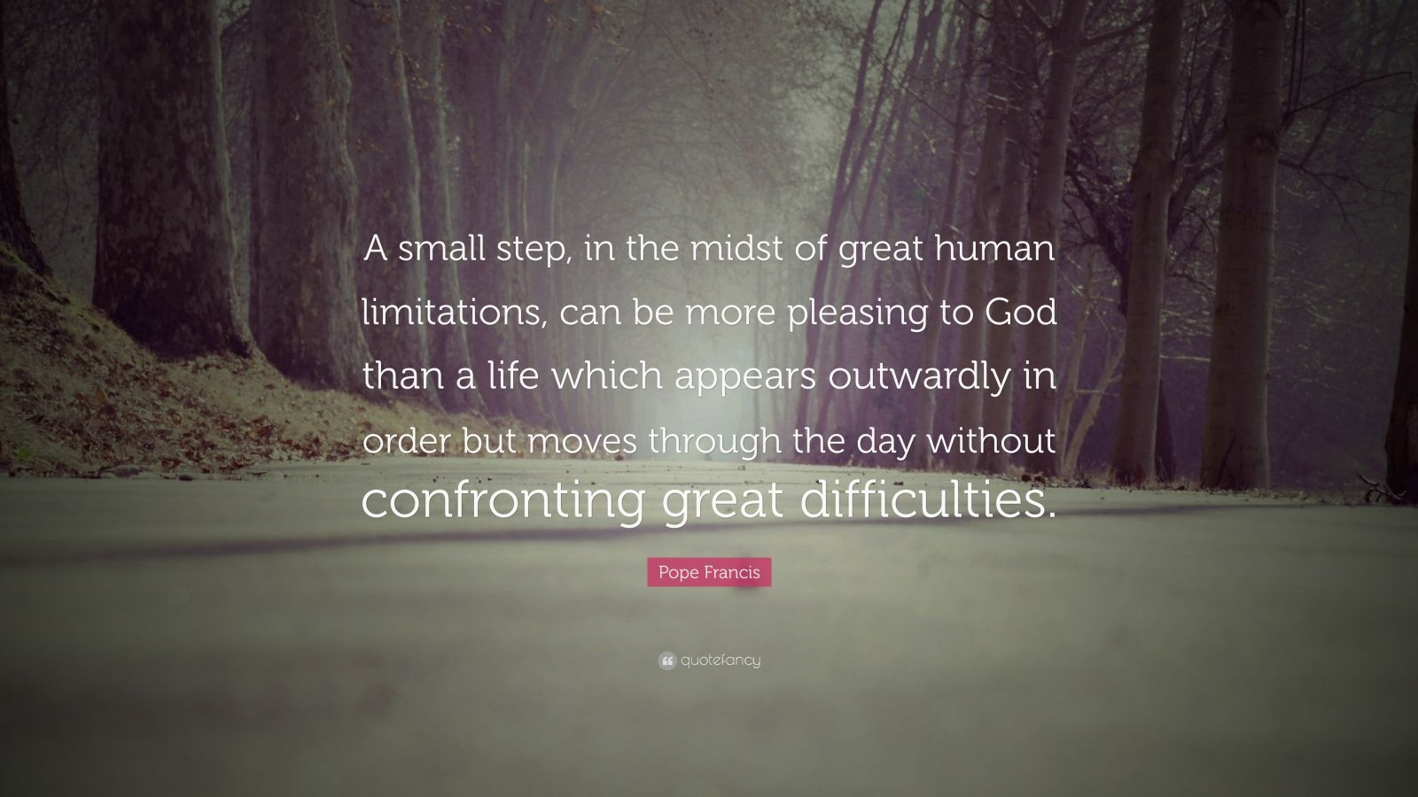 """Pope Francis Quote: """"A small step, in the midst of great human limitations, can be more pleasing to God than a life which appears outwardly in order but moves through the day without confronting great difficulties."""""""