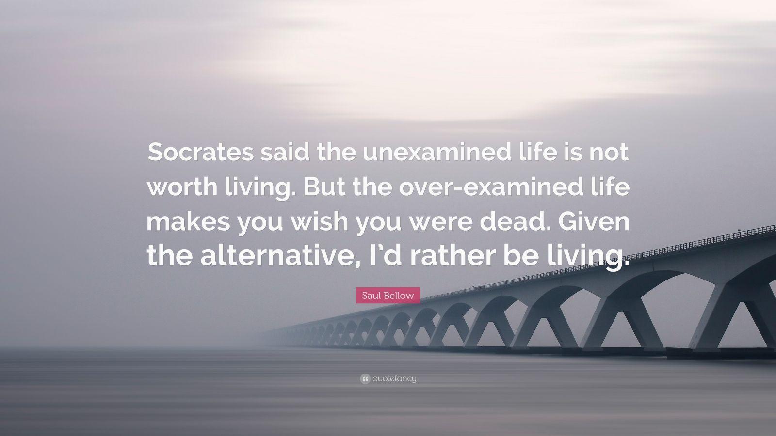 socrates the unexamined life essay