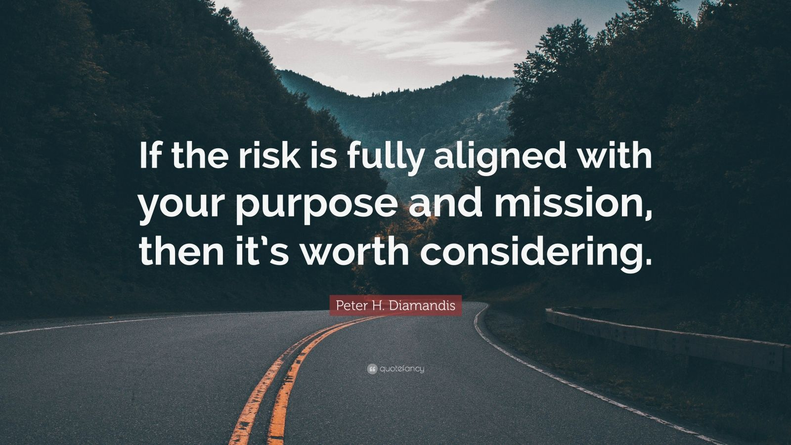 """Peter H. Diamandis Quote: """"If the risk is fully aligned with your purpose and mission, then it's worth considering."""""""