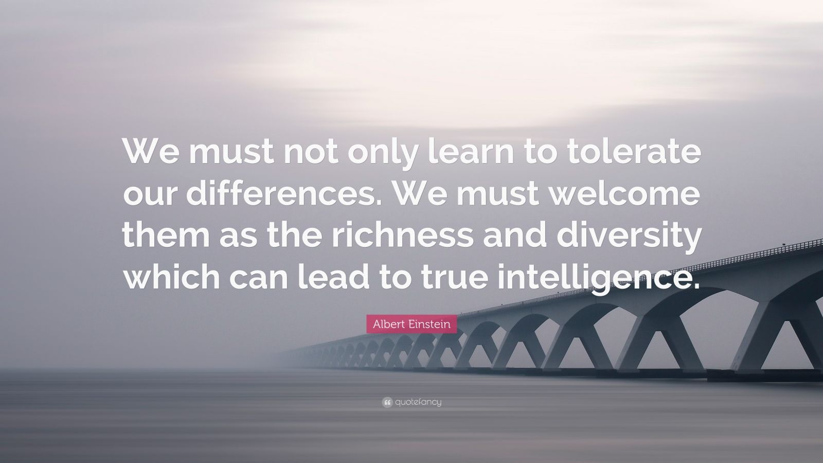 """Albert Einstein Quote: """"We must not only learn to tolerate our differences. We must welcome them as the richness and diversity which can lead to true intelligence."""""""