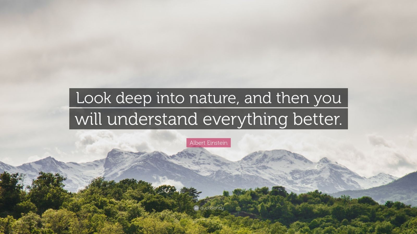 "Albert Einstein Quote: ""Look deep into nature, and then you will understand everything better."""