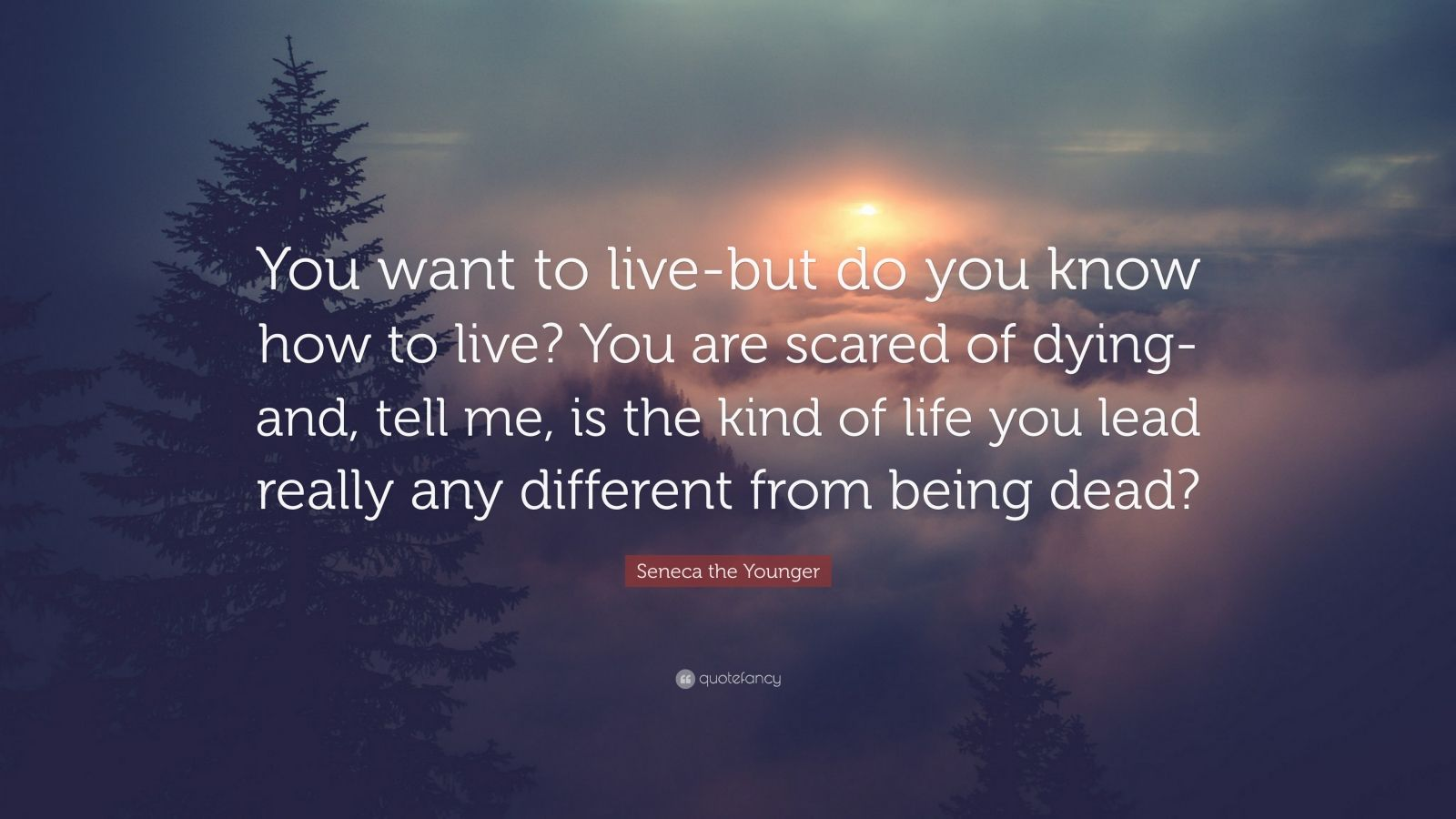 "Seneca the Younger Quote: ""You want to live-but do you know how to live? You are scared of dying-and, tell me, is the kind of life you lead really any different from being dead?"""