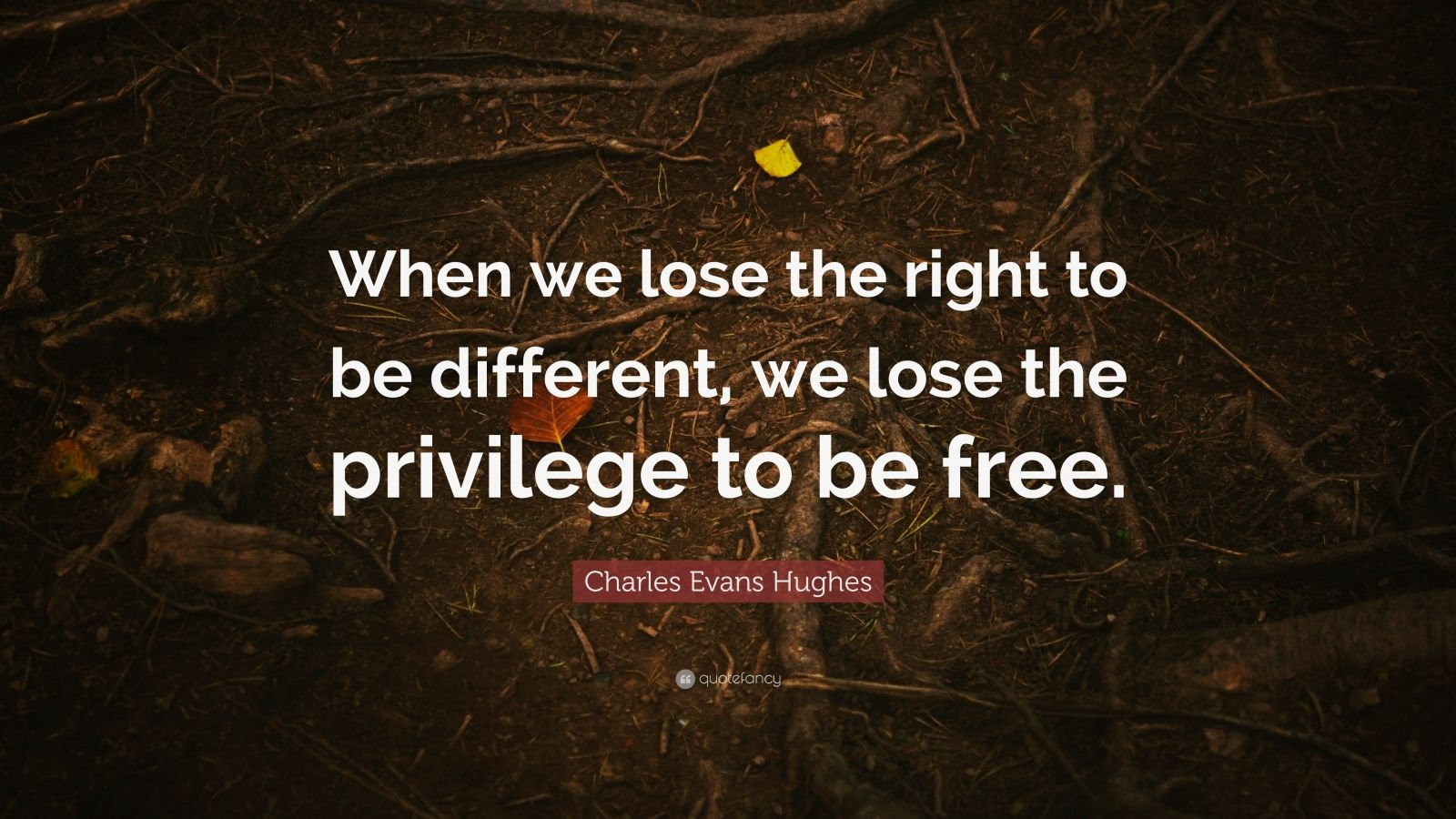 """Charles Evans Hughes Quote: """"When we lose the right to be different, we lose the privilege to be free."""""""