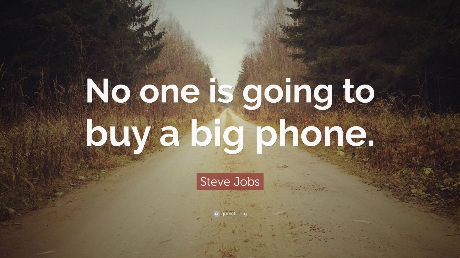 "Steve Jobs Quote: ""No one is going to buy a big phone."""