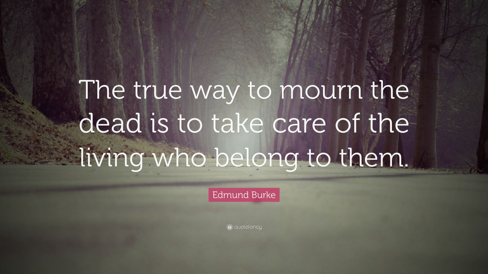 "Edmund Burke Quote: ""The true way to mourn the dead is to take care of the living who belong to them."""