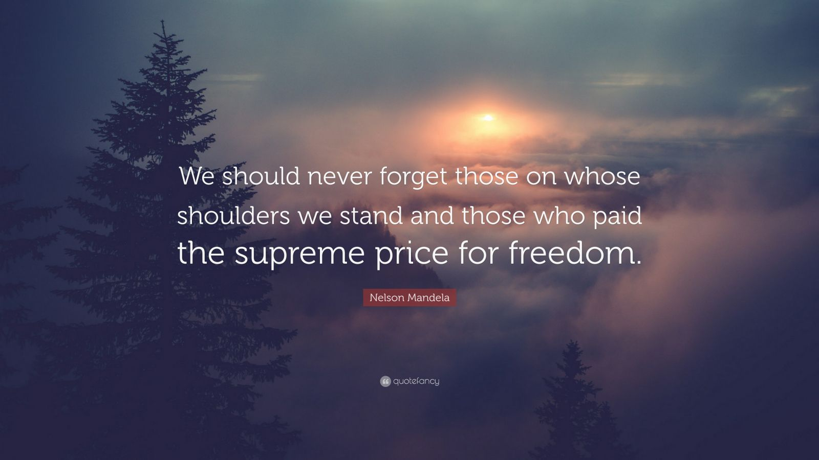 """Nelson Mandela Quote: """"We should never forget those on whose shoulders we stand and those who paid the supreme price for freedom."""""""