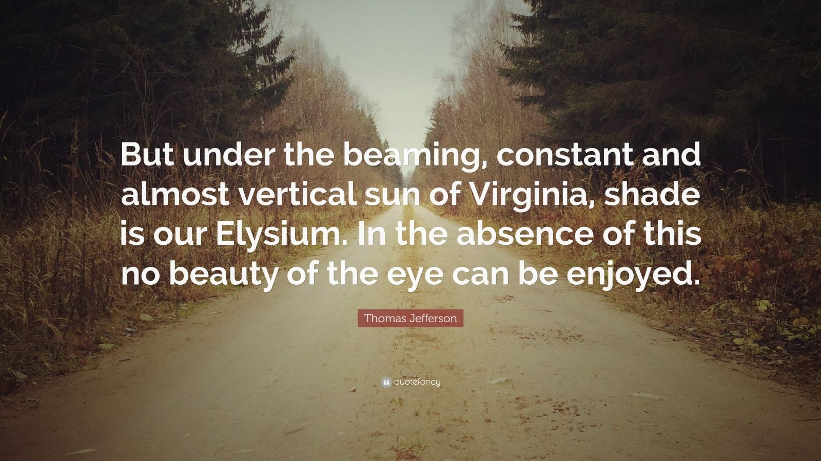 """Thomas Jefferson Quote: """"But under the beaming, constant and almost vertical sun of Virginia, shade is our Elysium. In the absence of this no beauty of the eye can be enjoyed."""""""