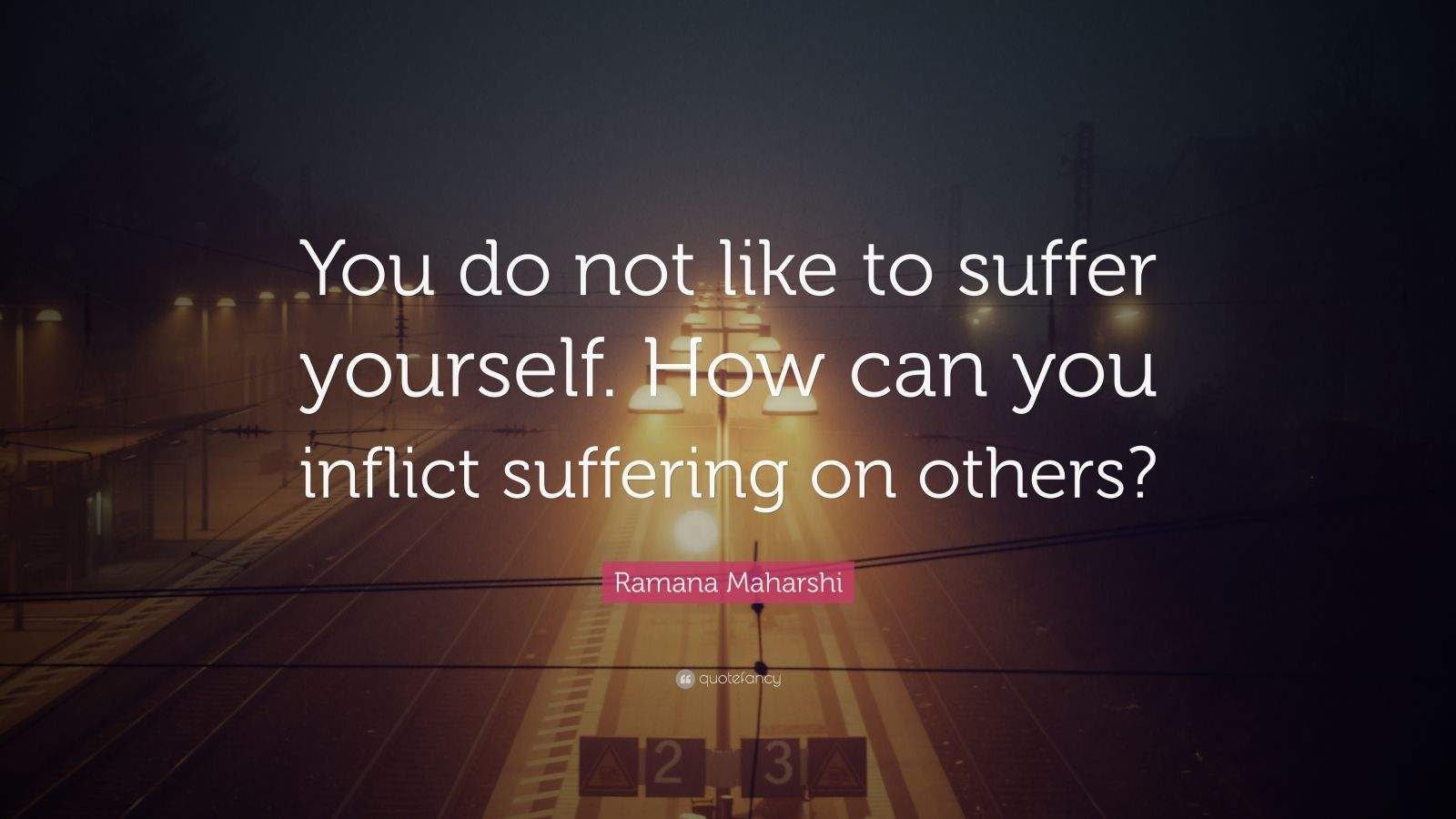 "Ramana Maharshi Quote: ""You do not like to suffer yourself. How can you inflict suffering on others?"""