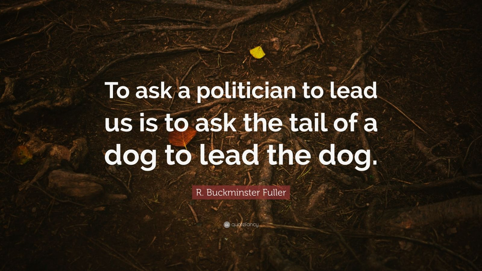 """R. Buckminster Fuller Quote: """"To ask a politician to lead us is to ask the tail of a dog to lead the dog."""""""