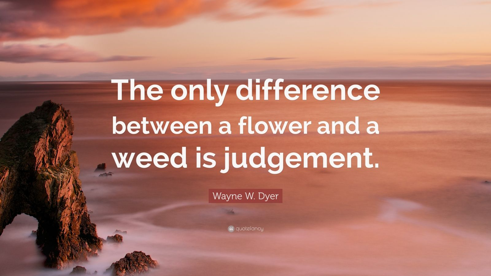 """Wayne W. Dyer Quote: """"The only difference between a flower and a weed is judgement."""""""