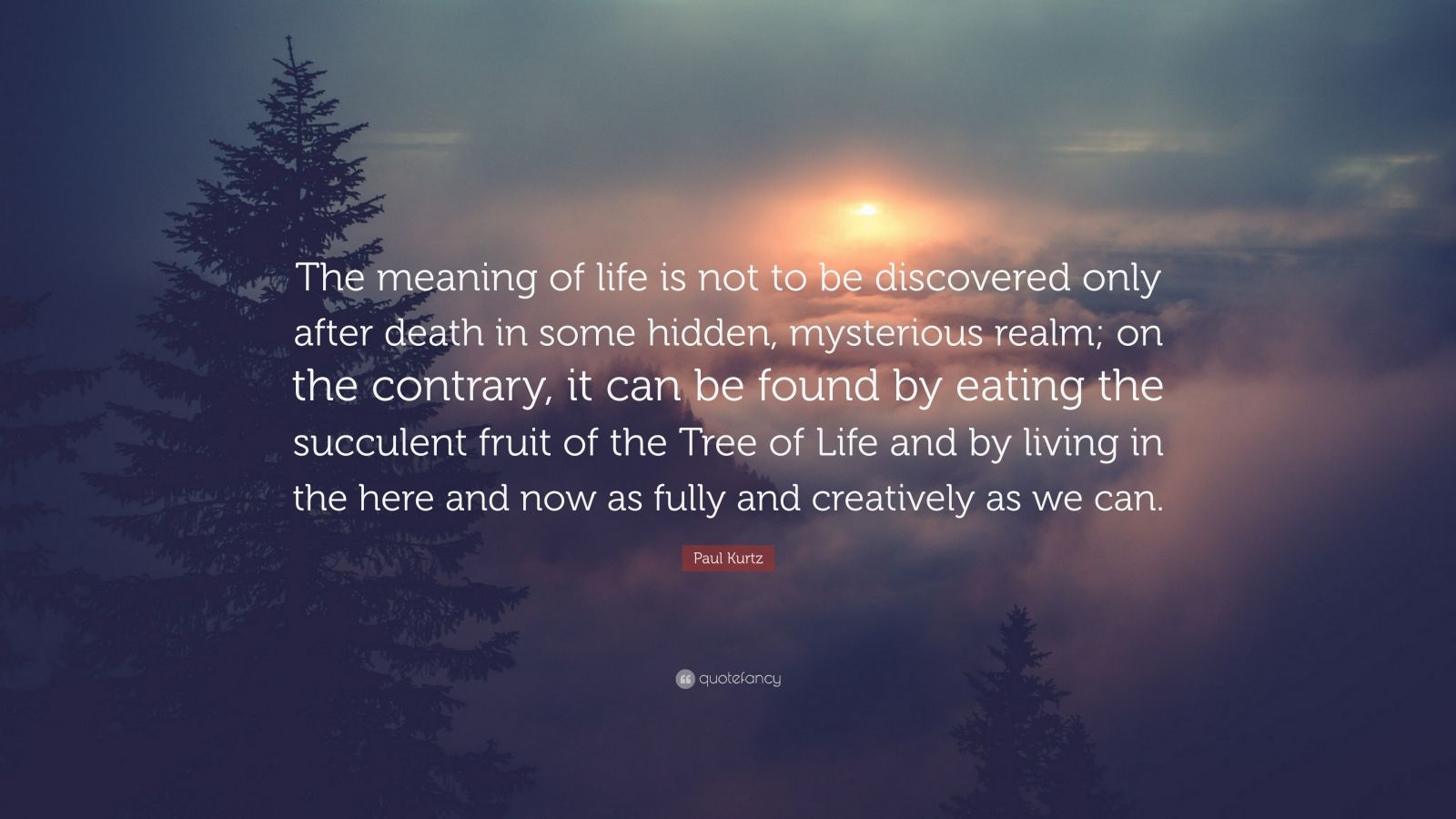 the idea of death and the meaning of life Humans have always wondered about the meaning of lifelife has no higher purpose than to perpetuate the survival of dnalife has no design, no purpose, no evil and no good, nothing but blind pitiless indifference1 --richard dawkins.