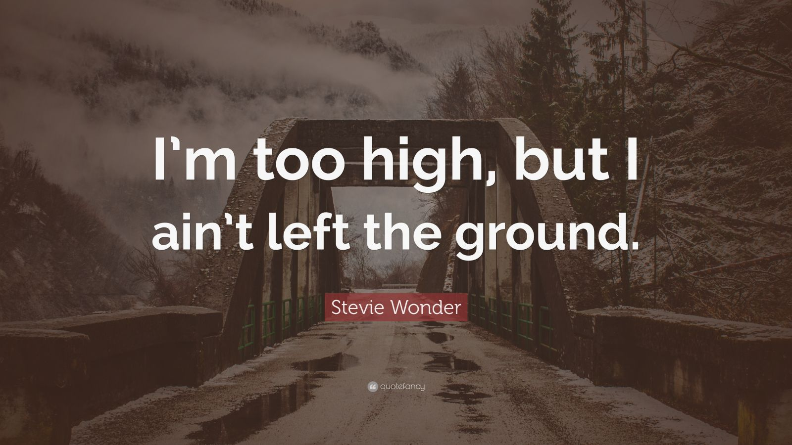 """Stevie Wonder Quote: """"I'm too high, but I ain't left the ground."""""""