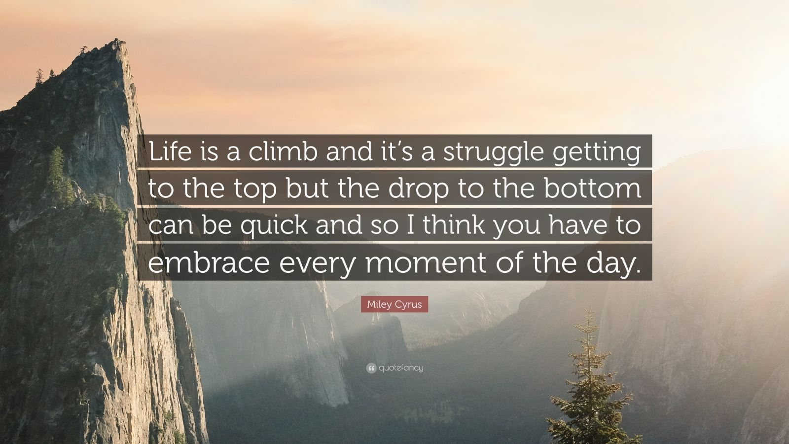"Miley Cyrus Quote: ""Life is a climb and it's a struggle getting to the top but the drop to the bottom can be quick and so I think you have to embrace every moment of the day."""