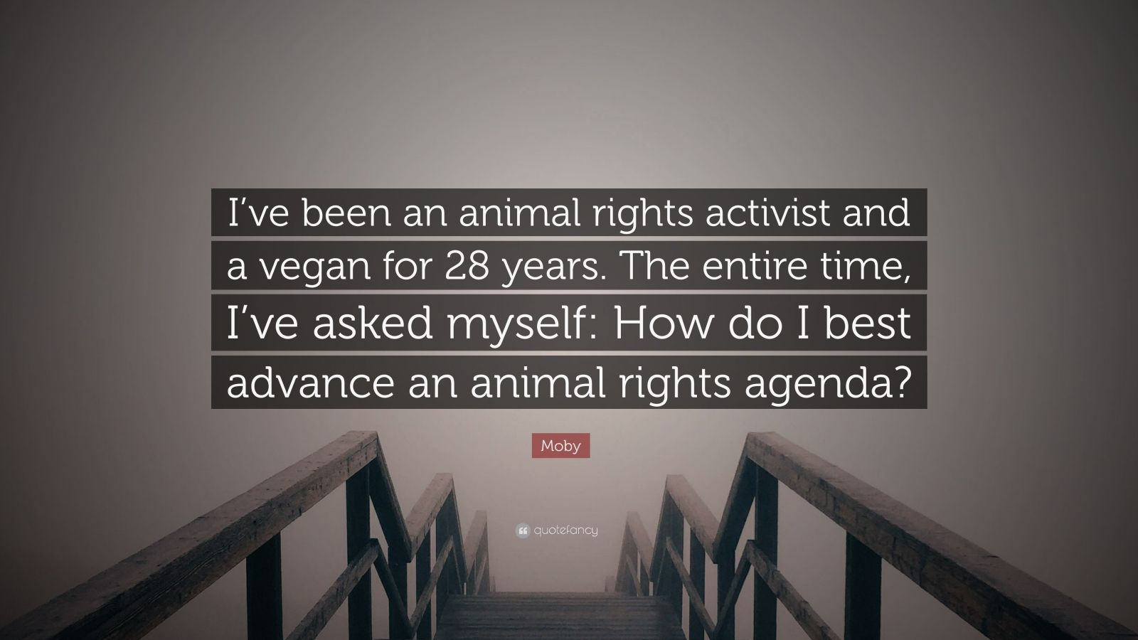 animal rights activist moby - HD 1600×900