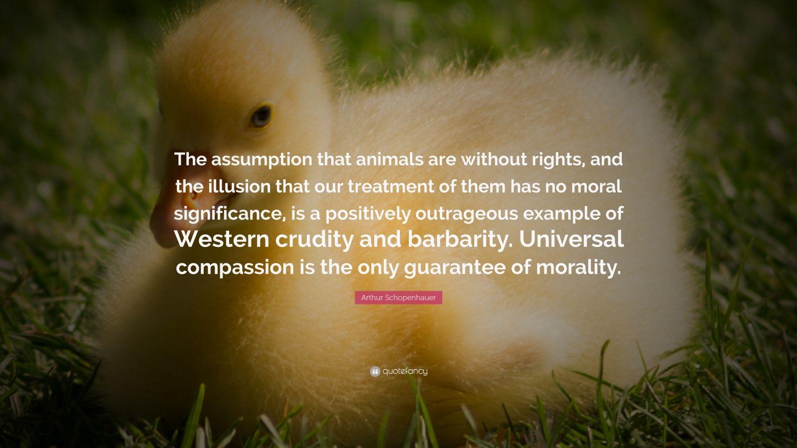 "Arthur Schopenhauer Quote: ""The Assumption That Animals"