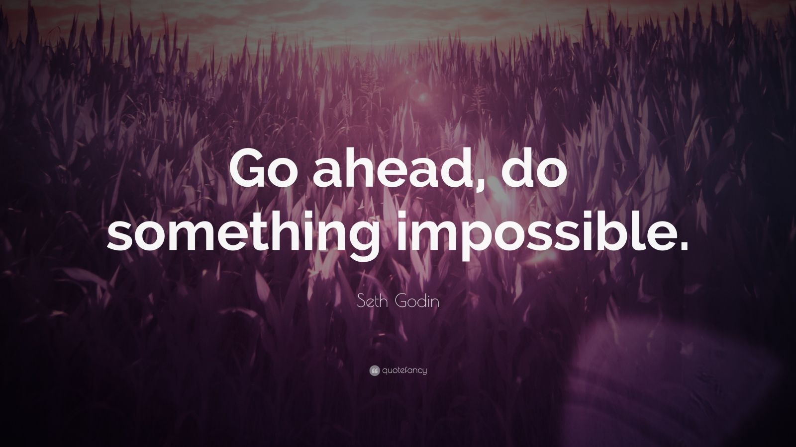 "Seth Godin Quote: ""Go ahead, do something impossible."""