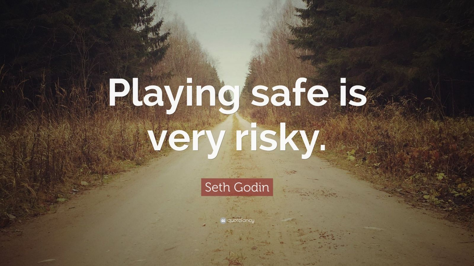 "Seth Godin Quote: ""Playing safe is very risky."""