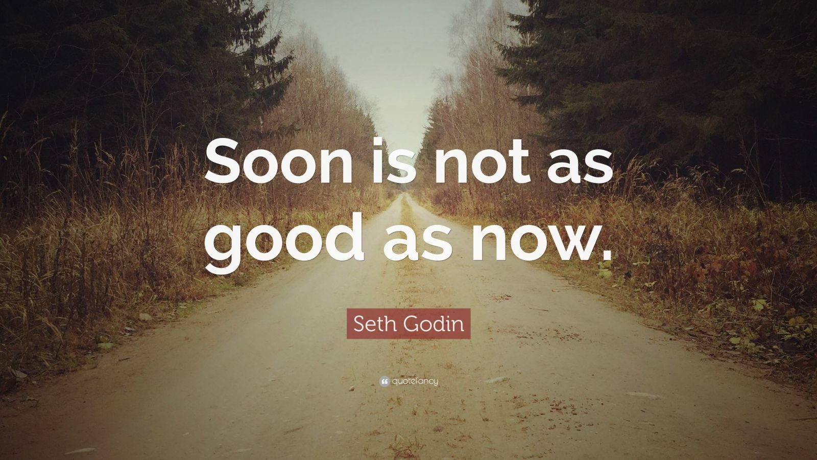 "Seth Godin Quote: ""Soon is not as good as now."""