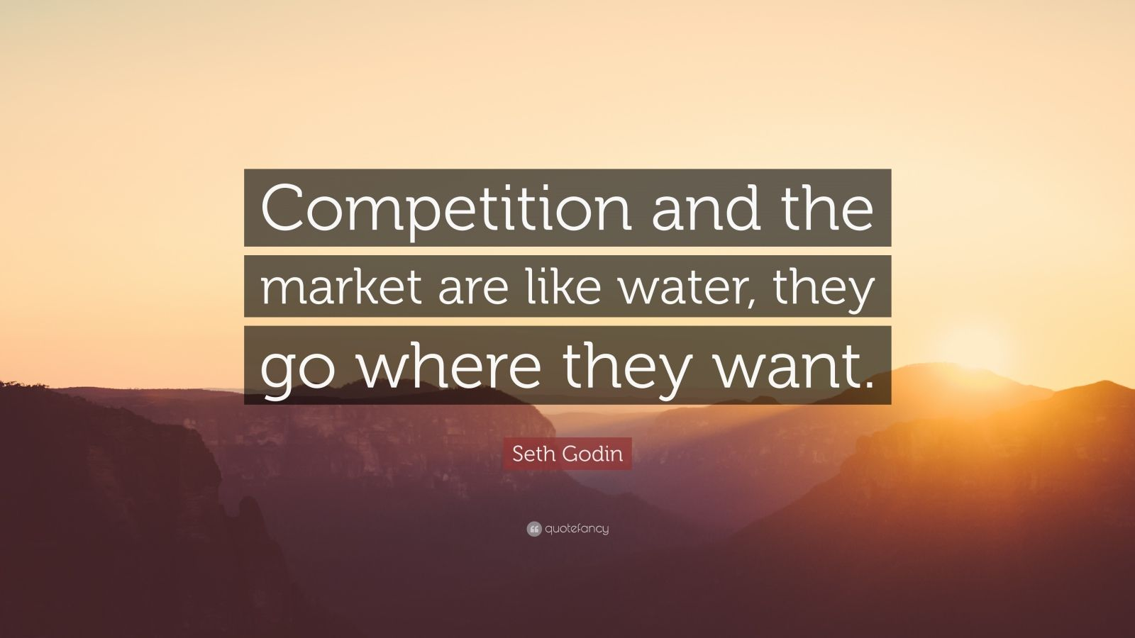 """Seth Godin Quote: """"Competition and the market are like water, they go where they want."""""""