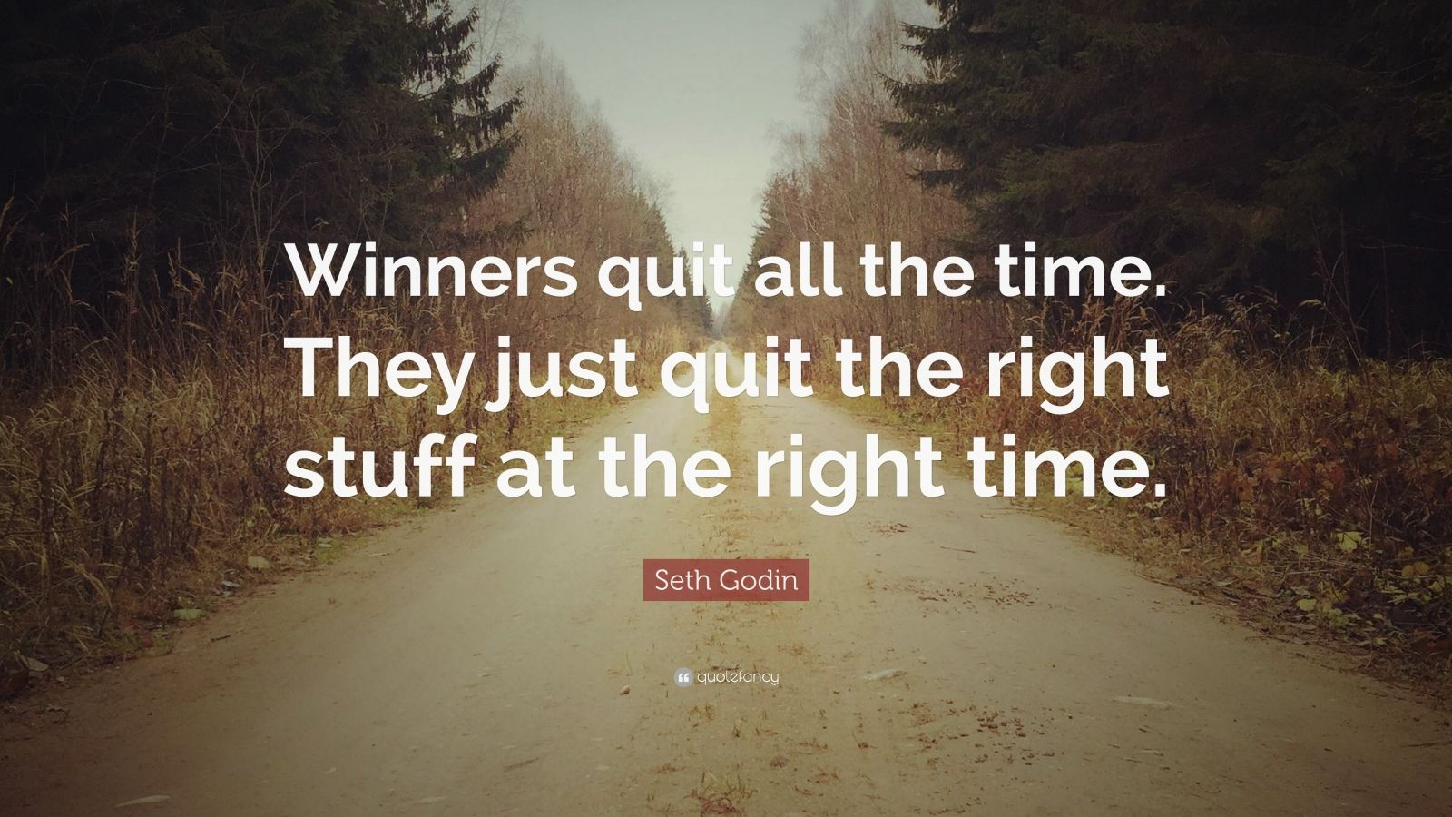 "Seth Godin Quote: ""Winners quit all the time. They just quit the right stuff at the right time."""