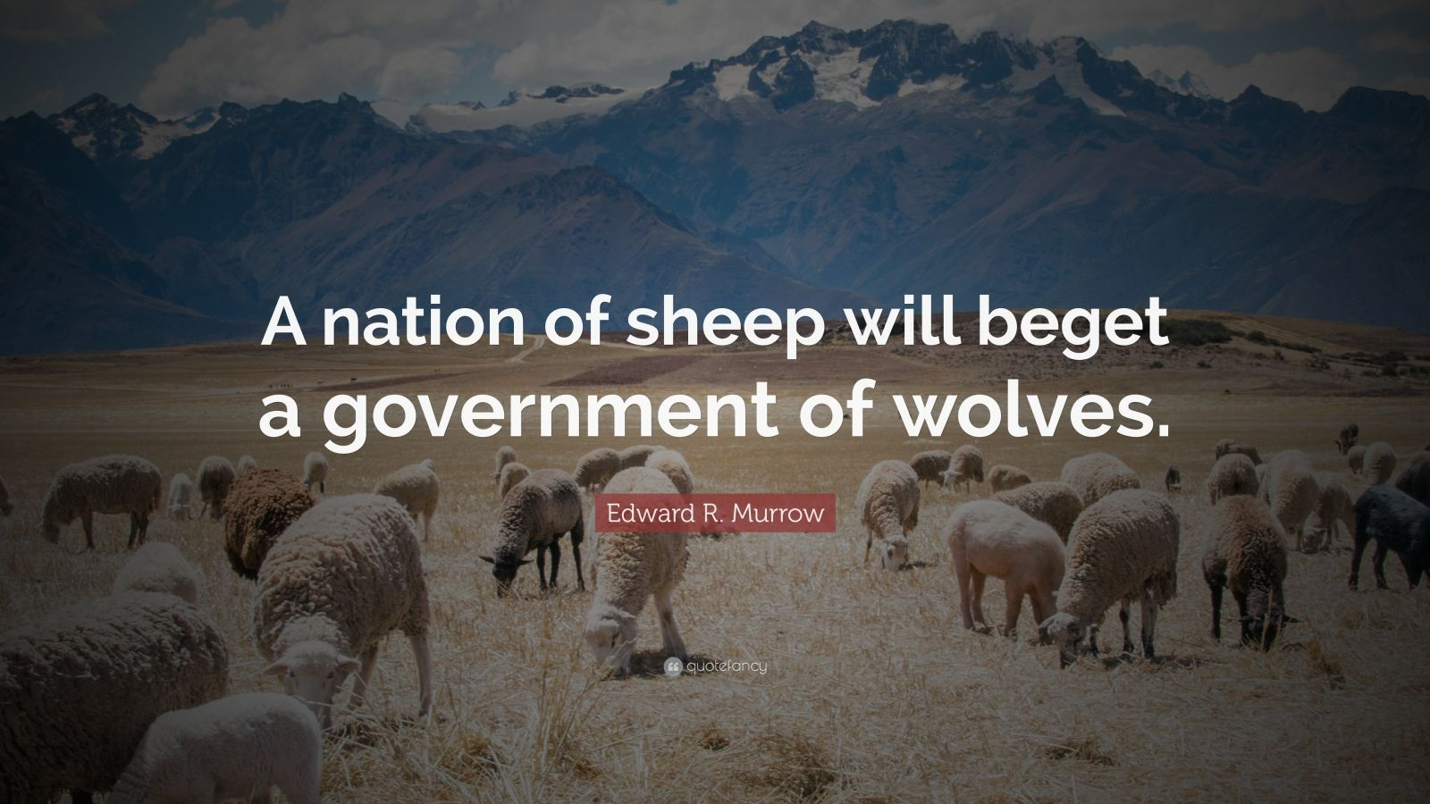 "Edward R. Murrow Quote: ""A nation of sheep will beget a government of wolves."""
