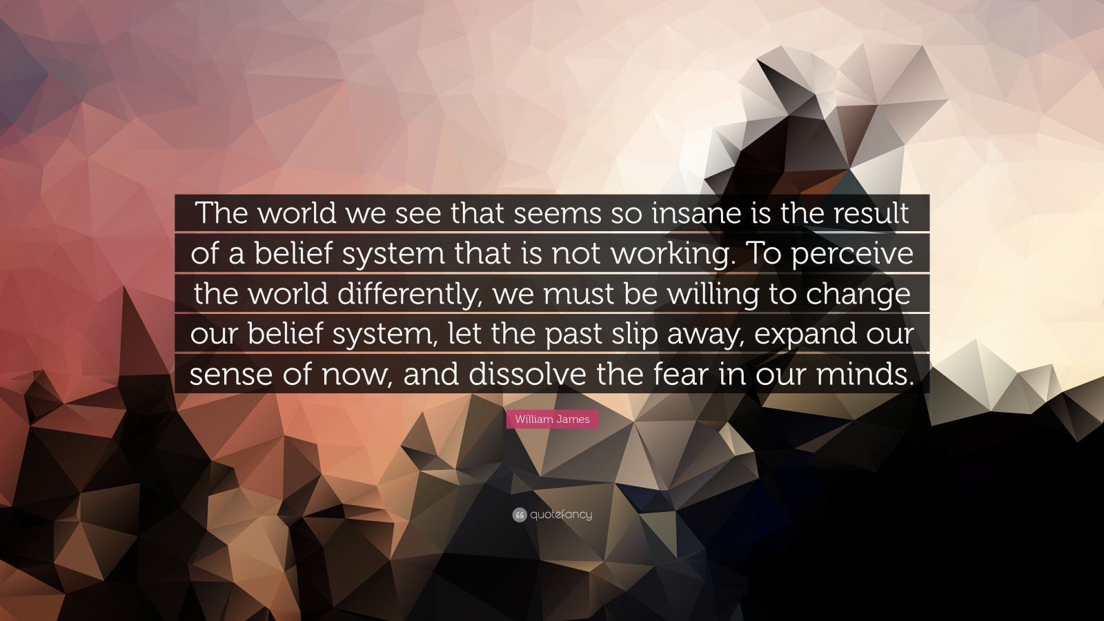 "William James Quote: ""The world we see that seems so insane is the result of a belief system that is not working. To perceive the world differently, we must be willing to change our belief system, let the past slip away, expand our sense of now, and dissolve the fear in our minds."""