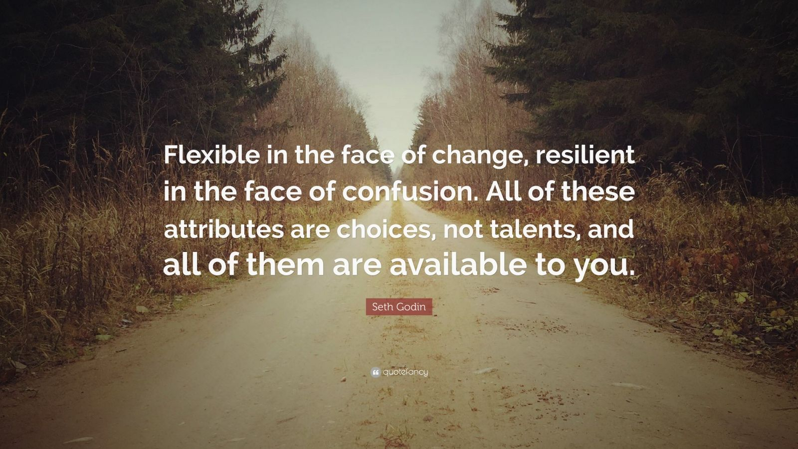 "Seth Godin Quote: ""Flexible in the face of change, resilient in the face of confusion. All of these attributes are choices, not talents, and all of them are available to you."""