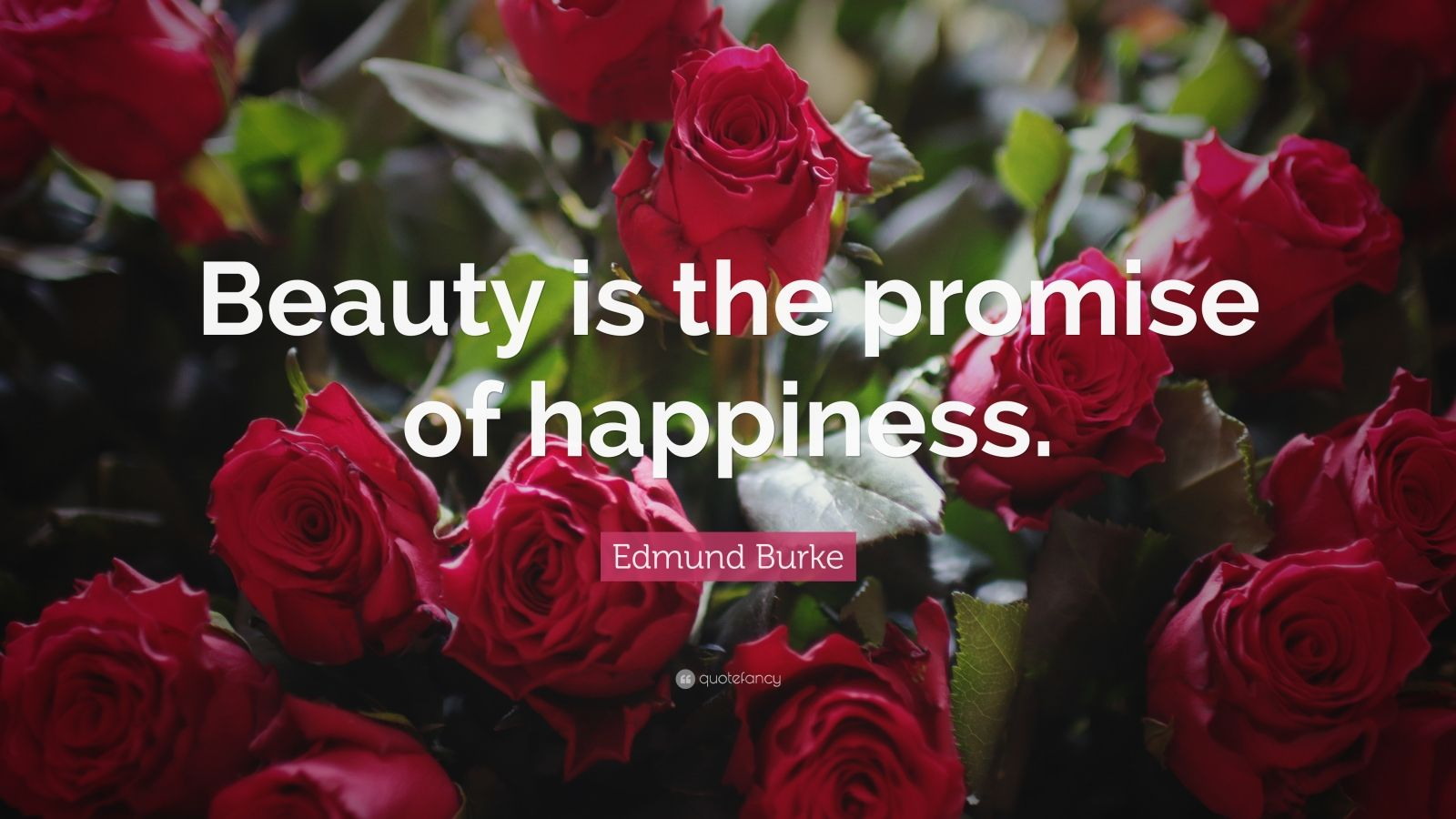 "Edmund Burke Quote: ""Beauty is the promise of happiness."""
