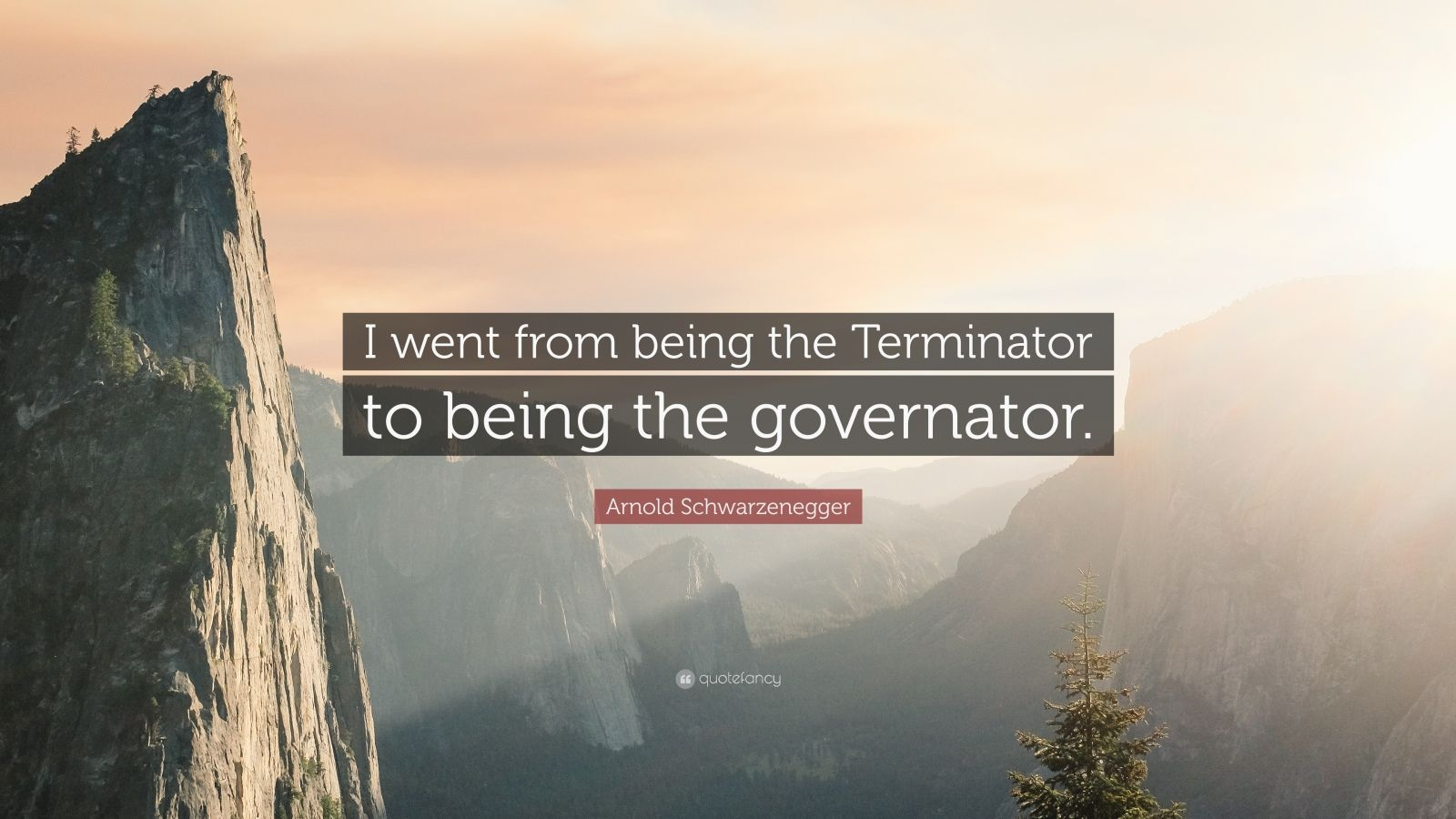 """Arnold Schwarzenegger Quote: """"I went from being the Terminator to being the governator."""""""