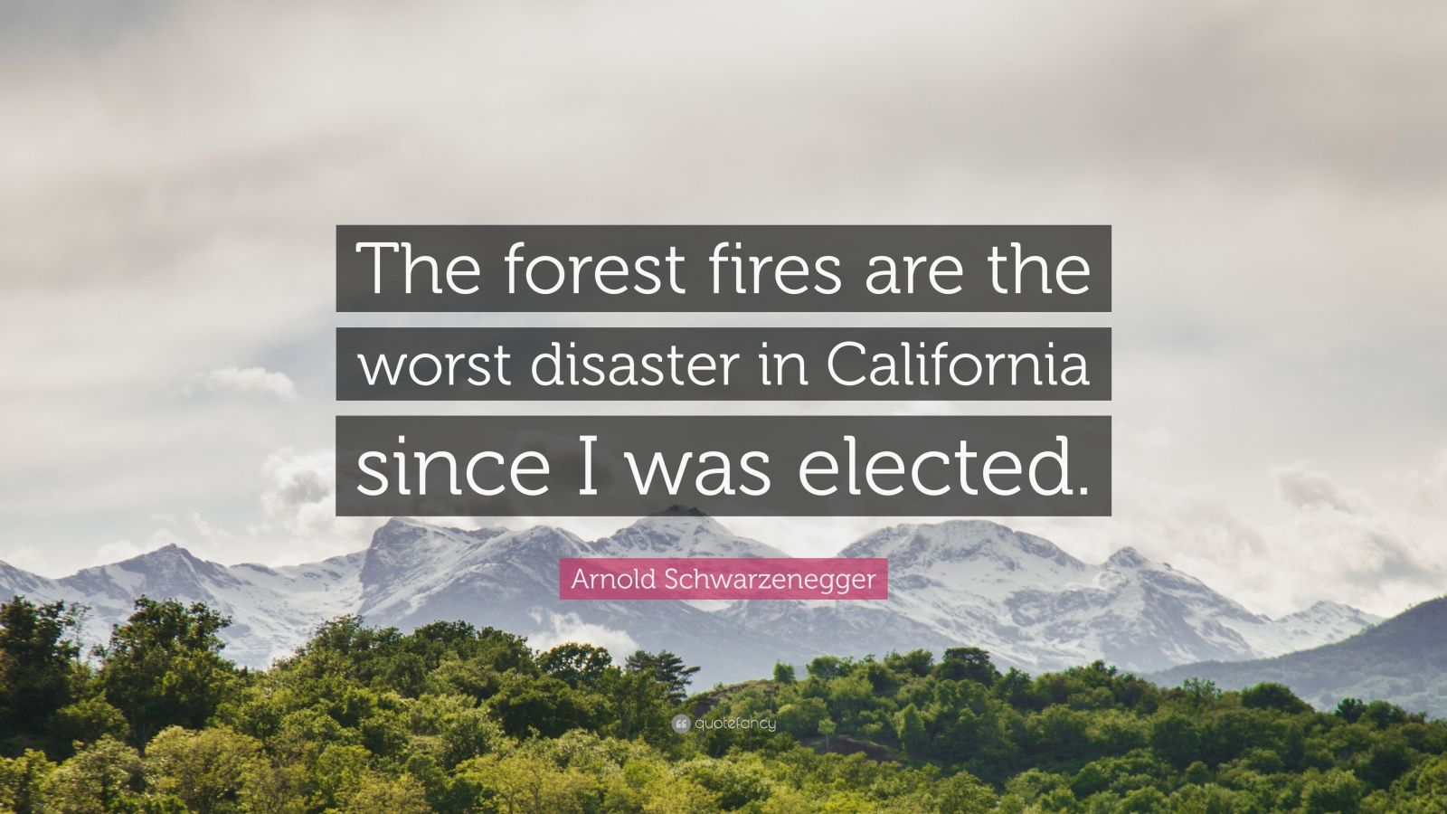 "Arnold Schwarzenegger Quote: ""The forest fires are the worst disaster in California since I was elected."""