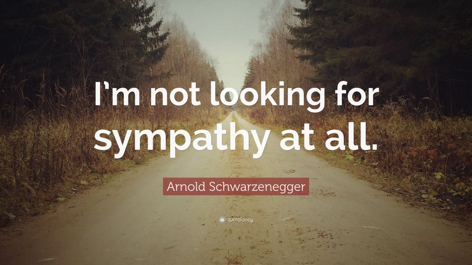 """Arnold Schwarzenegger Quote: """"I'm not looking for sympathy at all."""""""