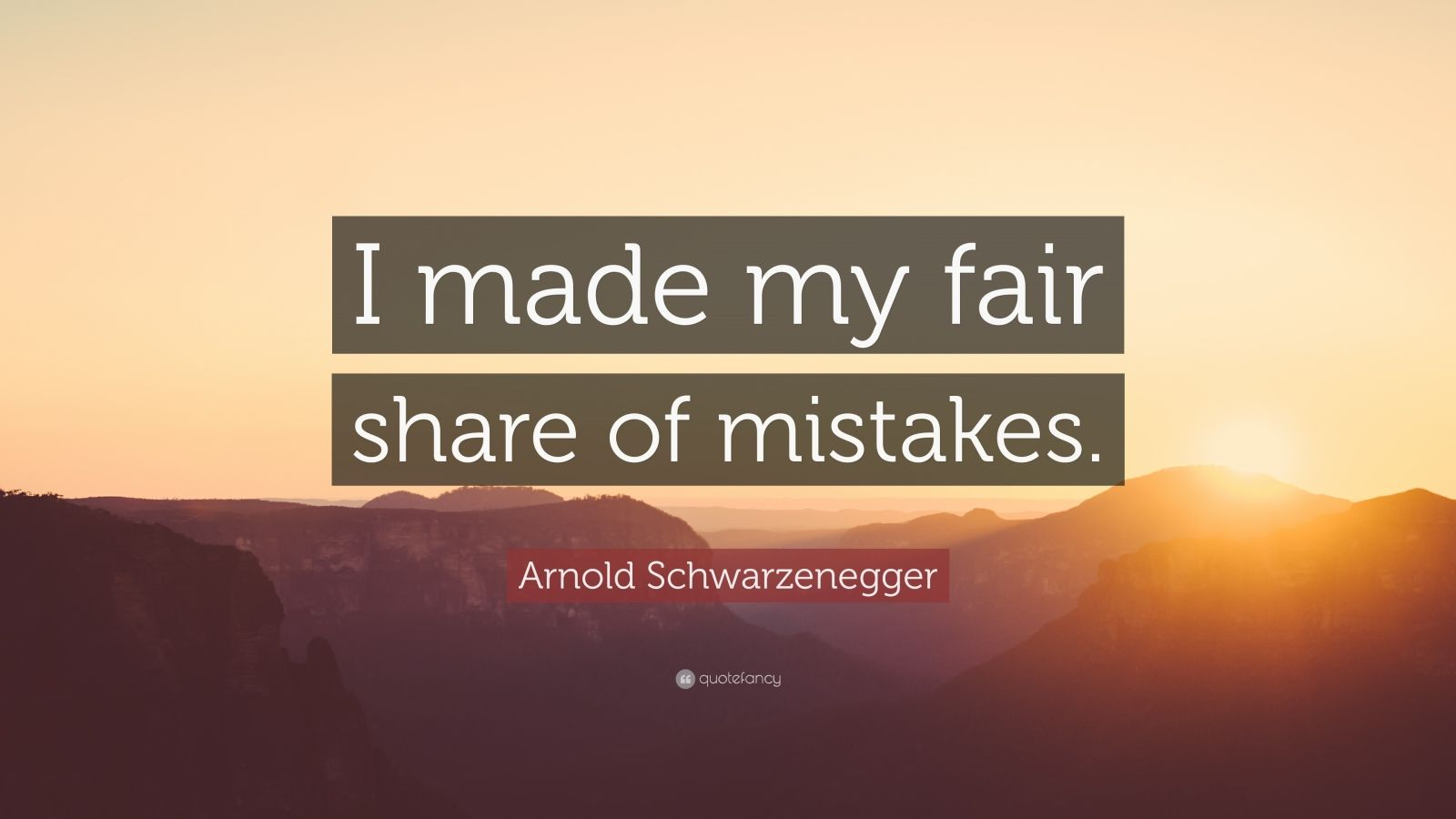 "Arnold Schwarzenegger Quote: ""I made my fair share of mistakes."""