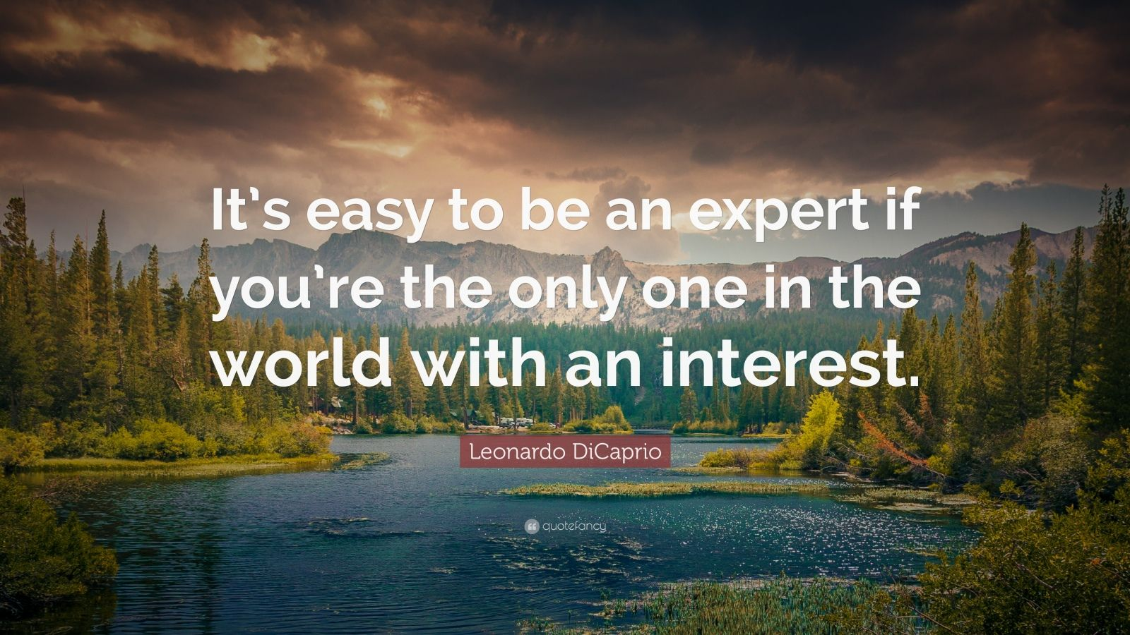 """Leonardo DiCaprio Quote: """"It's easy to be an expert if you're the only one in the world with an interest."""""""