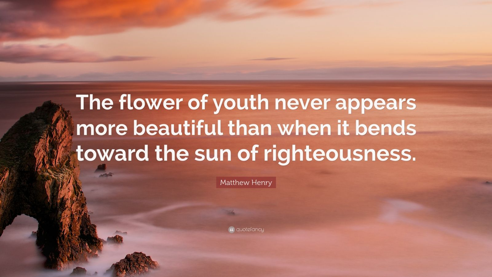 """Matthew Henry Quote: """"The flower of youth never appears more beautiful than when it bends toward the sun of righteousness."""""""