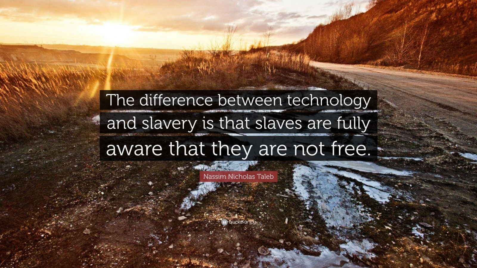 """Nassim Nicholas Taleb Quote: """"The difference between technology and slavery is that slaves are fully aware that they are not free."""""""