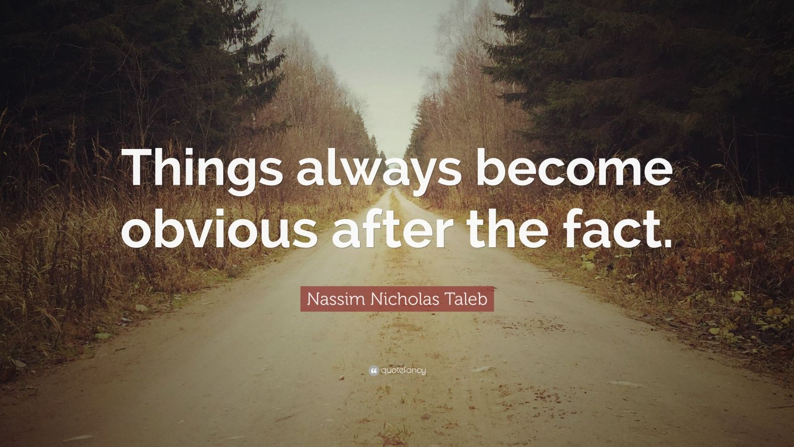 "Nassim Nicholas Taleb Quote: ""Things always become obvious after the fact."""