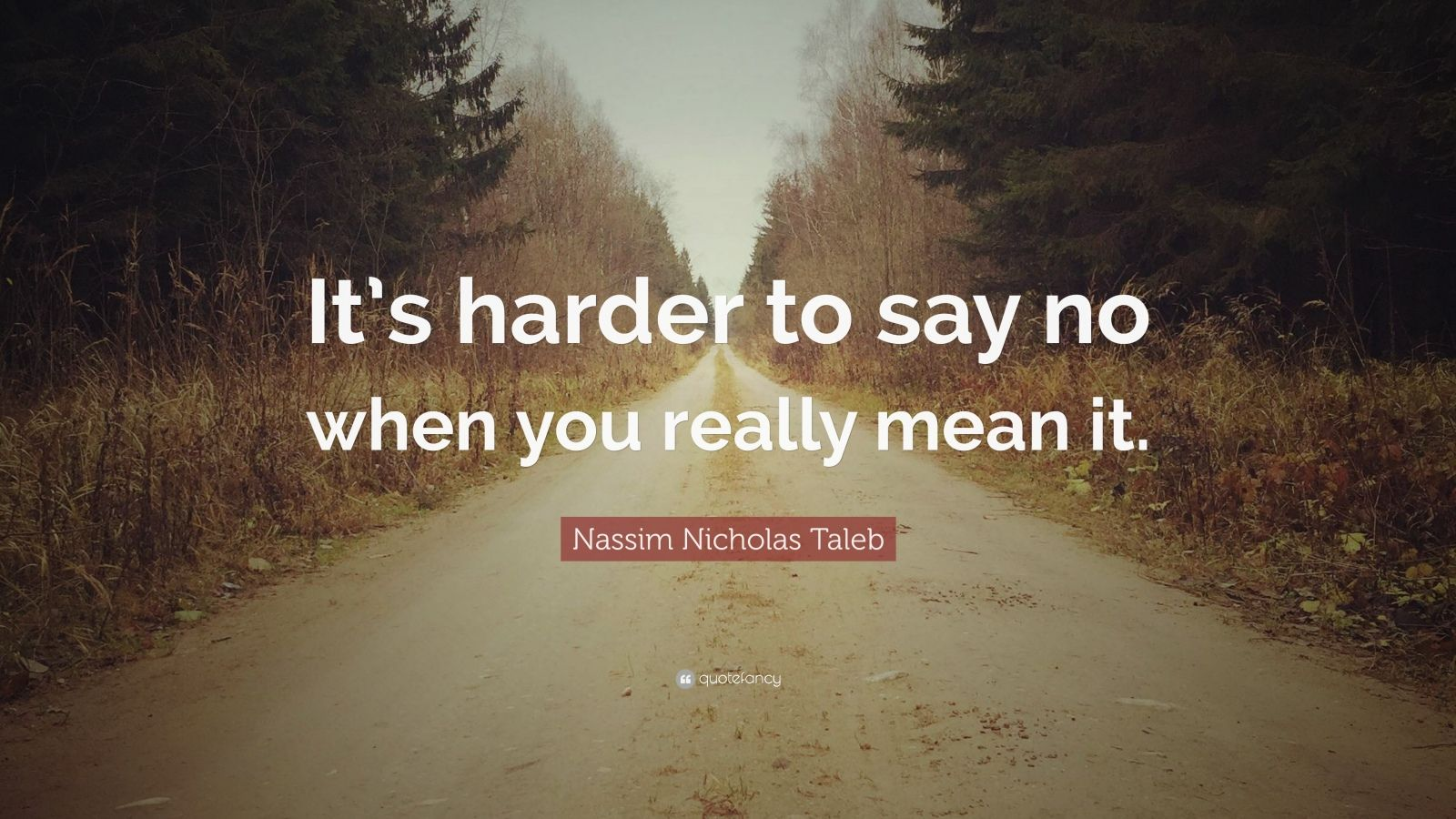 "Nassim Nicholas Taleb Quote: ""It's harder to say no when you really mean it."""