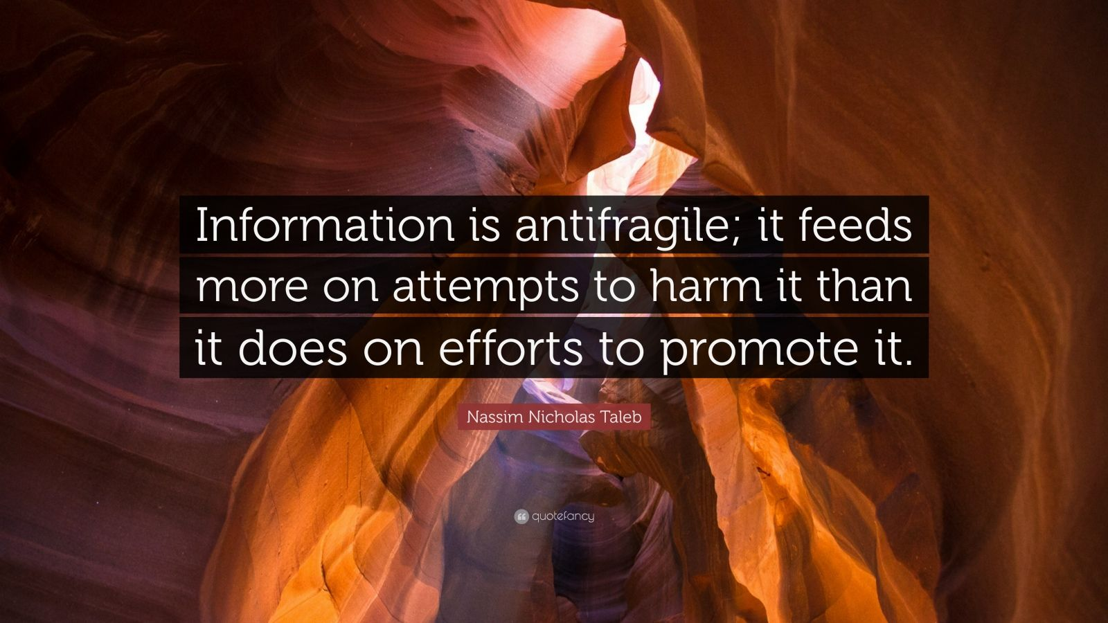 "Nassim Nicholas Taleb Quote: ""Information is antifragile; it feeds more on attempts to harm it than it does on efforts to promote it."""