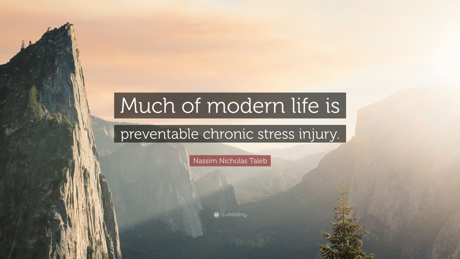 """Nassim Nicholas Taleb Quote: """"Much of modern life is preventable chronic stress injury."""""""