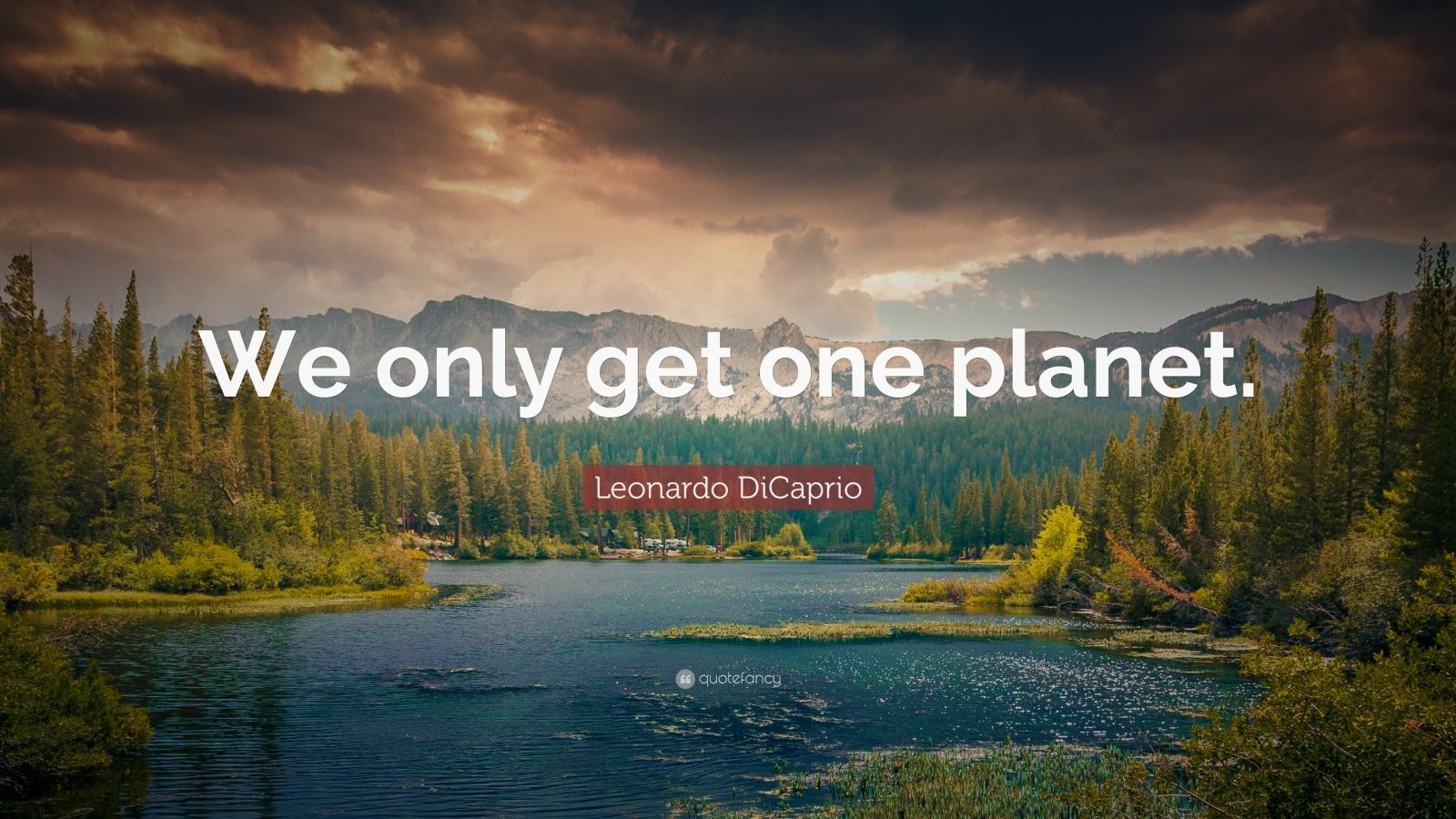 """Leonardo DiCaprio Quote: """"We only get one planet."""""""