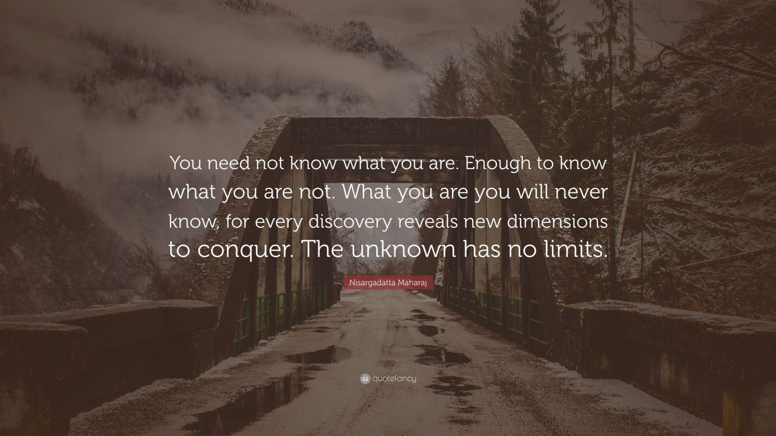 """Nisargadatta Maharaj Quote: """"You need not know what you are. Enough to know what you are not. What you are you will never know, for every discovery reveals new dimensions to conquer. The unknown has no limits."""""""