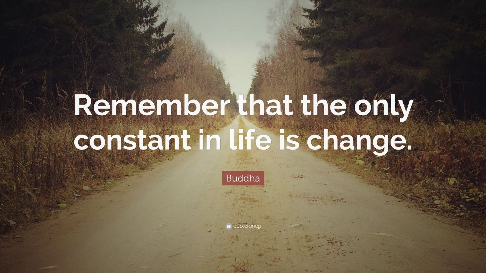 "Buddha Quote: ""Remember that the only constant in life is change."""