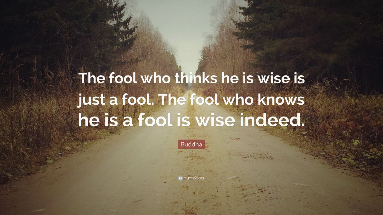 "Buddha Quote: ""The fool who thinks he is wise is just a fool. The fool who knows he is a fool is wise indeed."""