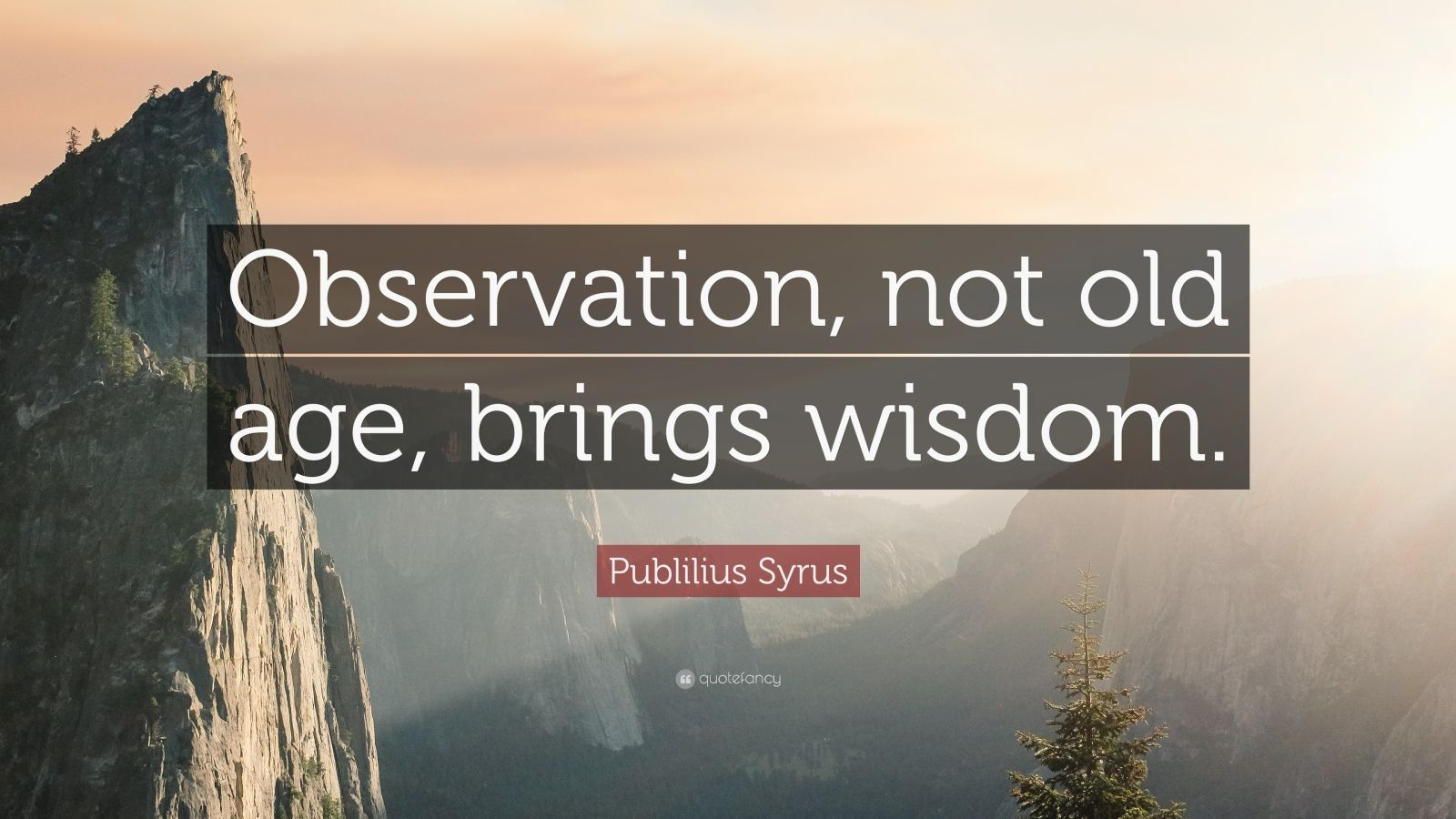 "Publilius Syrus Quote: ""Observation, not old age, brings wisdom."""