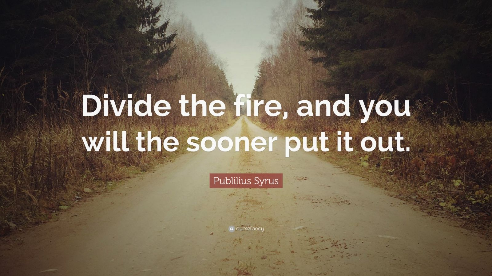 "Publilius Syrus Quote: ""Divide the fire, and you will the sooner put it out."""