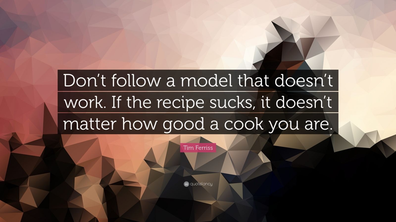 "Tim Ferriss Quote: ""Don't follow a model that doesn't work. If the recipe sucks, it doesn't matter how good a cook you are."""