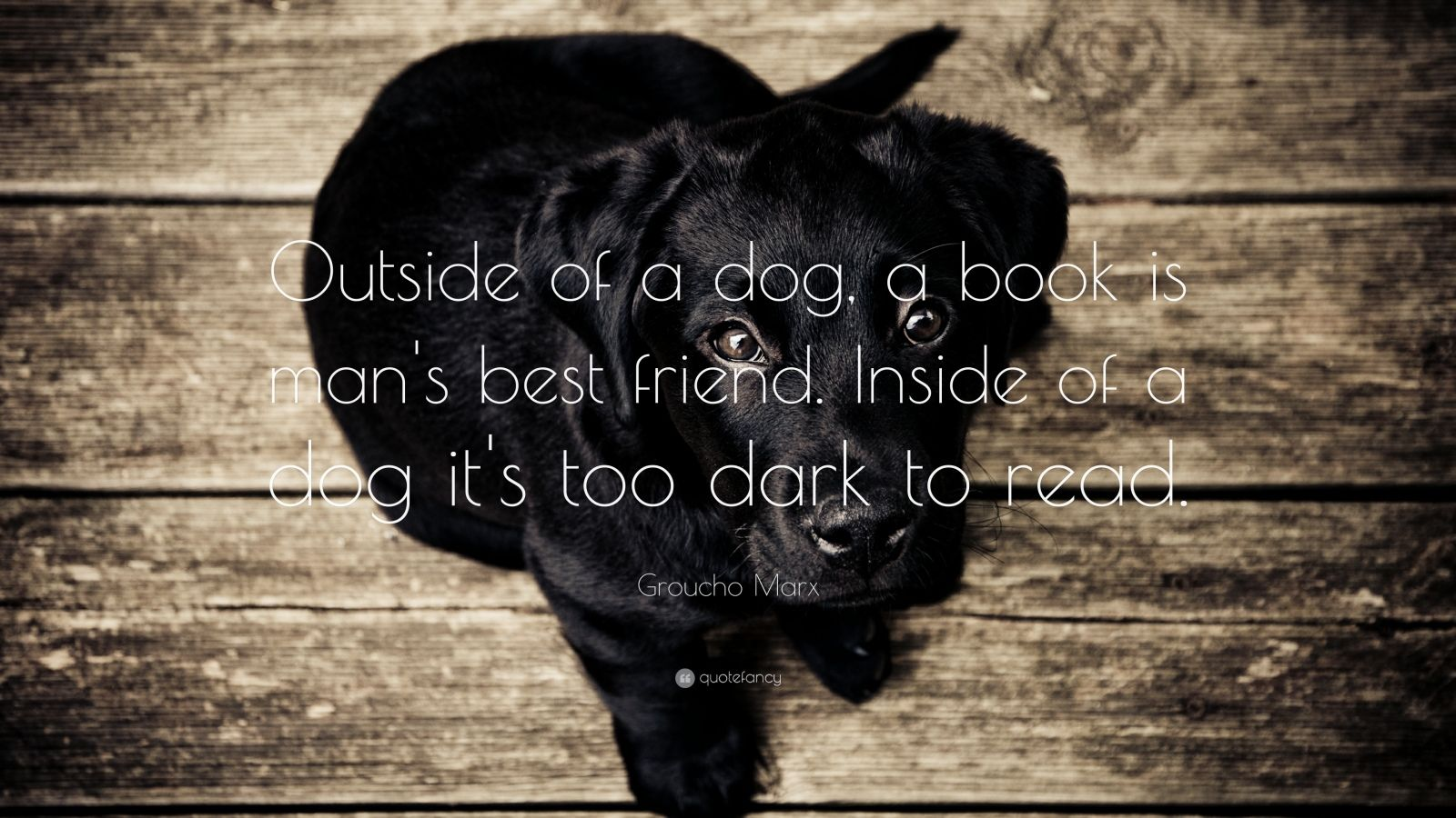 Groucho Marx Quote: Outside of a dog, a book is man's