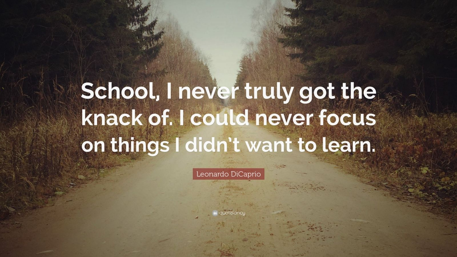 "Leonardo DiCaprio Quote: ""School, I never truly got the knack of. I could never focus on things I didn't want to learn."""